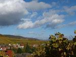 Blick über Pleisweiler hinweg