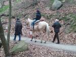 """Vorbei am Rimbacher Waldparkplatz """"Tränke"""""""