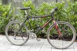 TROGER Tofana 1993, ein Modell der österreichischen Bikemarke Troger