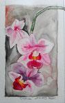 Orchidee (13 x 18 cm)