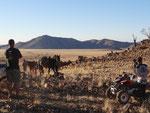 KOIIMASIS RANCH KOIIMASIS TIRAS MOUNTAINS NAMIBIA MOTORRADREISEN ENDUROTOUREN QUADTOUREN GELÄNDEWAGENTOUREN ABENTEUERREISEN OFFROADTOUREN / NAMIBIA KALAHRI FISHRIVER CANYON SOSSUSVLEI