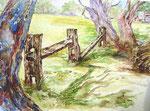 Australischer Zaun
