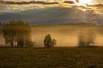 Naturpark Obere Donau Irndorfer Hardt bie Sonnenaufgang u.Nebel