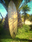Balsa Surfboard