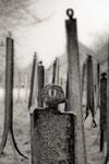 La Foule ©Michel LAURENT