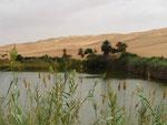 Es sind nicht alle Seen ausgetrocknet.