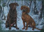 """Labrador """"Paula"""" und Hannoverischer Schweißhund """"Lotta"""" - 2010"""