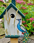 Houten Nestkastje, Nestkastje met Pauw, Details, Vogelhuisje bouwen ,  vogelhuisje met pauw_10