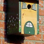 Houten Nestkastje, Nestkastje woudgroen met plat Dak, Details, Vogelhuisje bouwen, vogelhuisje woudgroen met plat dak_3