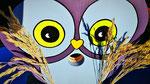 """Houten Nestkastje , """"Nestkastjes in vorm van een Uil, Details, Vogelhuisje bouwen ,  vogelhuisje Uil eindresultaat, gezicht"""