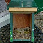Houten Nestkastje, Nestkastje woudgroen met plat Dak, Details, Vogelhuisje bouwen, vogelhuisje woudgroen met plat dak_1