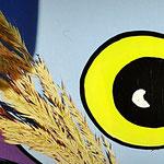 """Houten Nestkastje , """"Nestkastjes in vorm van een Uil, Details, Vogelhuisje bouwen ,  vogelhuisje Uil eindresultaat, oog-close up"""