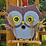 """Houten Nestkastje , """"Nestkastjes in vorm van een Uil, Details, Vogelhuisje bouwen ,  vogelhuisje Uil eindresultaat_5"""