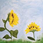 Sunflower Good Morning
