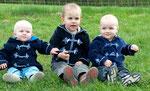 drei hoffnungsvolle Spefuxen...