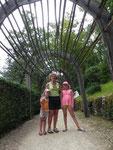 """Allée """"couverte"""" de bambous"""