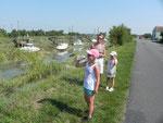 Le long du canal de la Seudre
