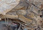 Fragmento de guerrero mimetizado (camaleón)