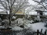 雪景色 造園・外構・エクステリアの【庭匠】奈良県北葛城郡広陵町