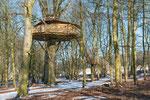 cabane de l'écureuil hiver