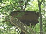 cabane de l'écureuil été
