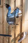 Porte Cabane de l'écureuil