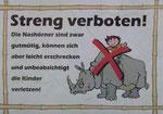 Nashornreiten für Kinder verboten