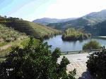 Blick von der Quinta de Tedo auf  die Tedomündung in den Douro, Portugal