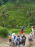 Chinesische Touristen posieren vor Reisterrassen, Bali, Indonesien