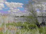 Landschaft bei Lebus an der Oder