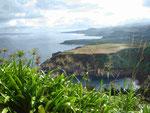 Blick auf die Nordküster von Sao Miguel, Azoren