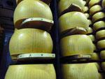 In einer Parmesanfabrik bei Parma, Italien