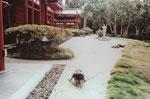 Nachbau des japanischen Tempels Byodo-in 998 in Uji auf Oahu/Hawaii zum 100. Jahrestag der jap. Besiedlung der Insel