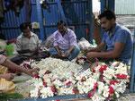 Blumenkettenherstellung auf Kolkatas Blumenmarkt
