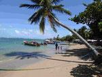 Strand von Tartan, Halbinsel Caravelle, Martinique, Frankreich