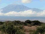 Mount Kilimanjaro Amboseli Nationalpark Kenia