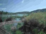 Flusslandschaft nahe Olympia, Peleponnes