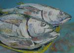 Gouache: Sal, Kapverden - Thunfische