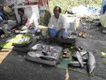 Fischhändler in einem westbengalischen Städtchen