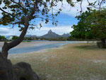 Tamarin / Mauritius