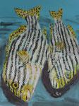 Gouache: Seychellen - gestreifte Fische