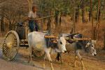 Wassertransport in Myanmar