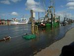 Alter Hafen Pellworm