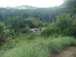 Jardin Royale, Mahe, Seychellen