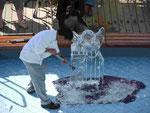 Eiskunst auf MS Albatros