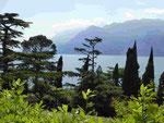 Blick auf den Gardasee von Malchesine