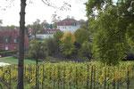 Barockschloß Meseberg, Gästehaus der Bundesregierung in Brandenburg