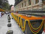 Blumenopfer am Mahabodhitempel von Bodhgaya, Indien