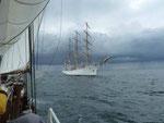 Hanse Sail Rostock 2013, polnisches Segelschulschiff
