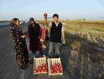 Granatäpfelverkaufer auf der Strasse nach Taschkent,Usbekistan